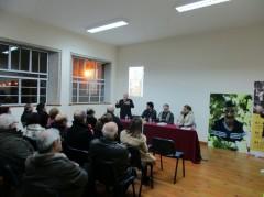 darque_vinha (6)